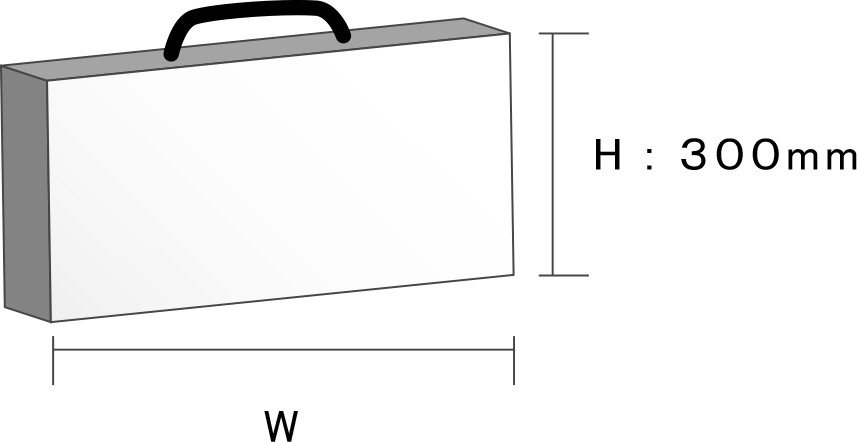 H:300mm W